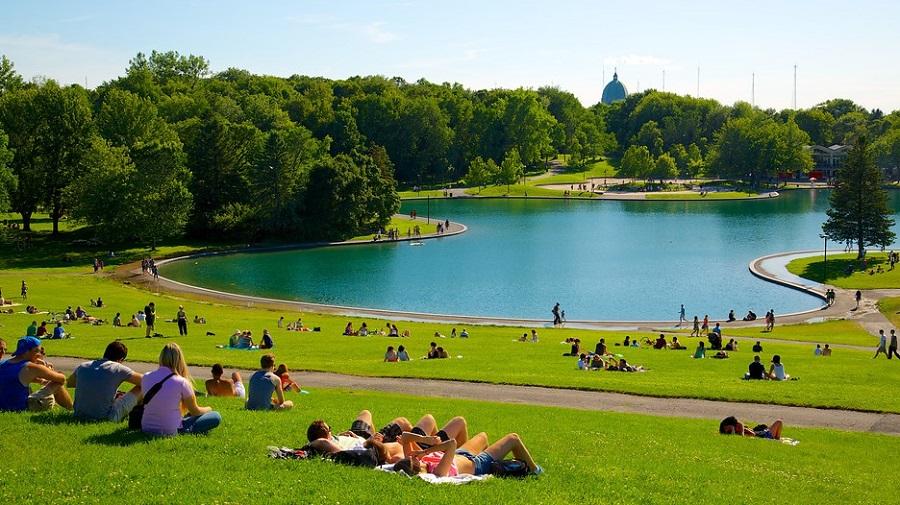 Parque-Mont-Royal-Montreal
