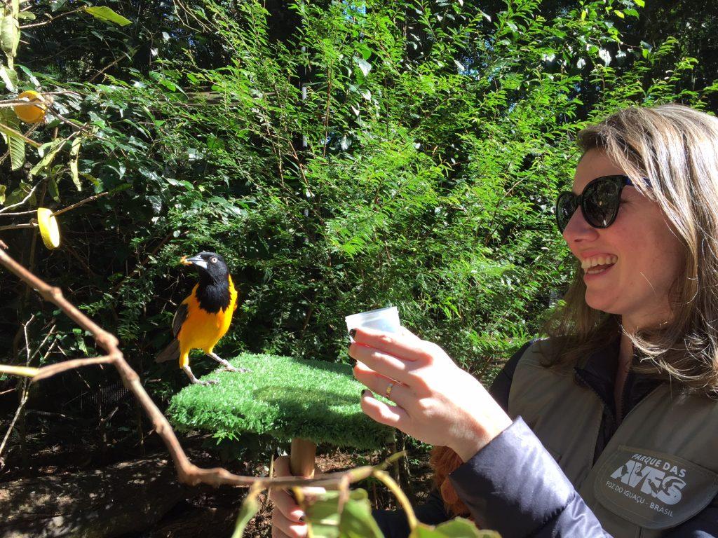 parque-das-aves-foz-do-iguaçu-passeios-kids