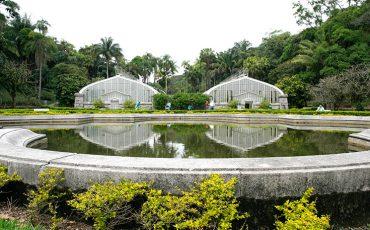 Passeio no Jardim Botânico é uma boa pedida para toda a família