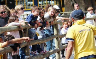 Mini Fazenda Pet Zoo é diversão garantida para as famílias