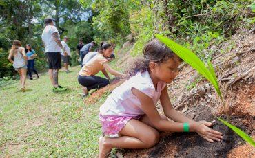 Espaço Voador conecta pais e filhos à Natureza com Oficina de Agrofloresta