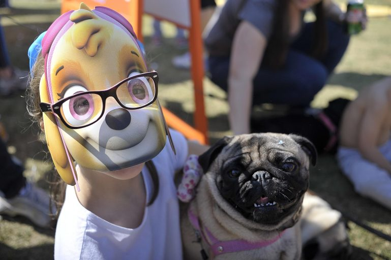 """GRATUITO! Evento """"Encontro de Patas"""" da Nick Jr. terá Patrulha Canina nas férias"""