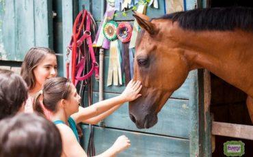 Manhã na Hípica oferece experiência única das crianças com cavalos