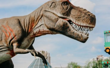 T-Rex Park terá férias com King Kong gigante e Festa Julina solidária