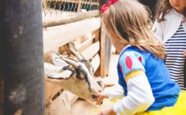 Dia das Crianças no Parque Della Vittoria tem encontro especial com Minnie, Mickey, Homem de Ferro, Bela e Fera