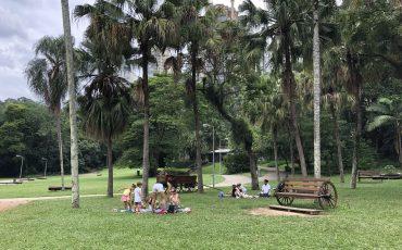 Parque Burle Marx: diversão e natureza na zona sul de São Paulo