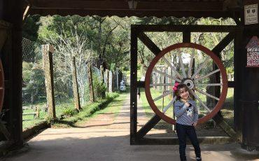 Campos do Jordão com crianças: Parque da Floresta Encantada é passeio imperdível para crianças pequenas na cidade
