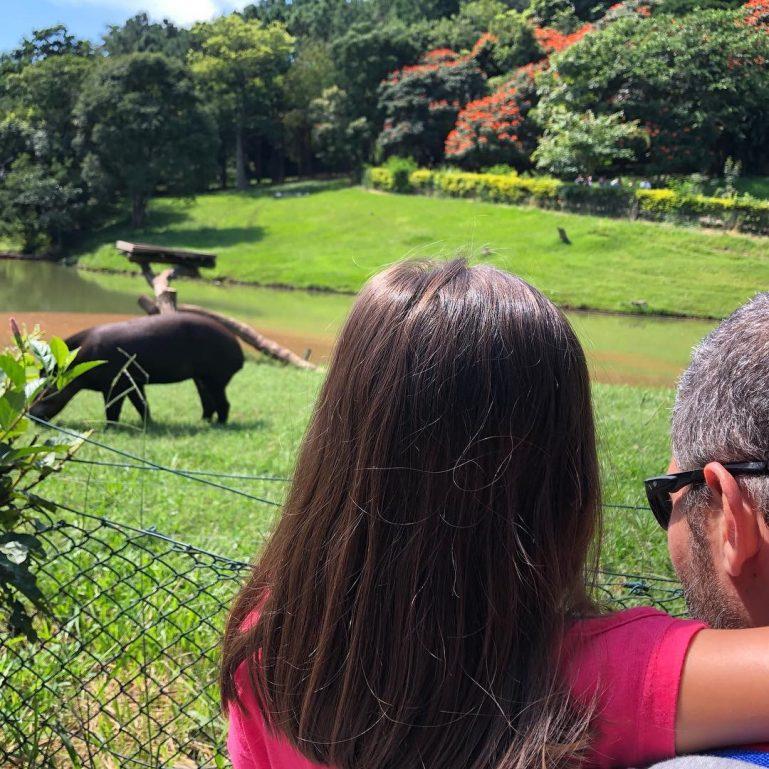 Zooparque Itatiba: Um dia no maior Zoológico Particular do Brasil