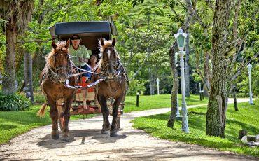 Carnaval no Fazzenda Park Hotel tem programação para toda a família com muita animação