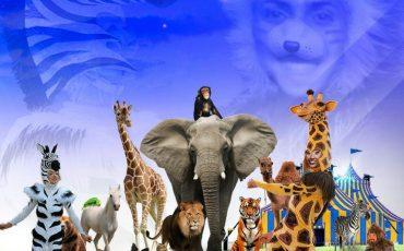 """A partir de R$ 19,90! Novo espetáculo do Circo Spacial """"Os Animais Voltaram"""" chega trazendo muita fofura e alegria para a criançada"""
