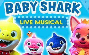 Baby Shark Live Musical no Teatro Santo Agostinho: ingressos com 50% de desconto no Passeios Kids