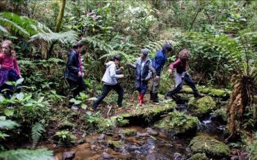 Viagem com crianças: Verde Perto fará vivência no Espaço Kalevala