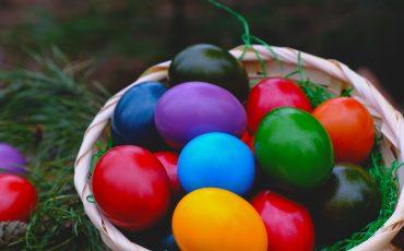 Gratuito! Páscoa no Shopping Praça da Moça convida crianças exploradoras a encontrarem o coelho perdido e seus ovos de chocolate